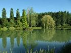 étang domaine de l'étang de Sandanet