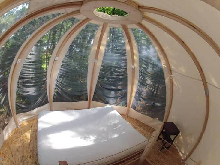 O Sleeping Wood